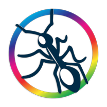logo_colorant2013